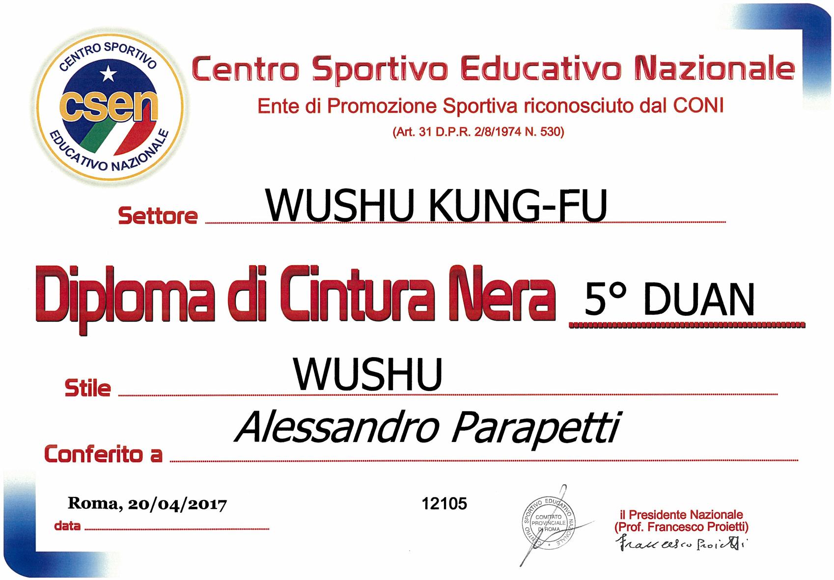 diploma-maestro-5-duan-csen